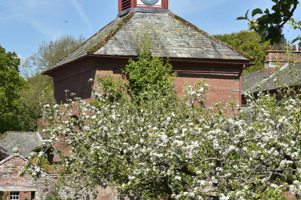 The Orchard and Dovecote at Acorn Bank, Cumbria