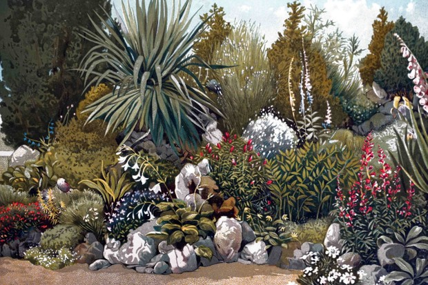 A colourful print showing part of the rockery in the gardens of the Royal Horticultural Society at Chiswick. Dated 19th century.
