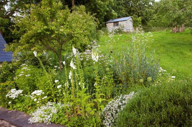 Sloped area in Alison Jenkins garden