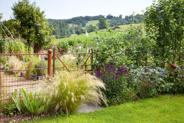 Gateway with grasses in Alison Jenkins' garden