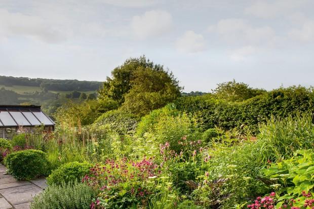 Mixed planting in Alison Jenkins' garden