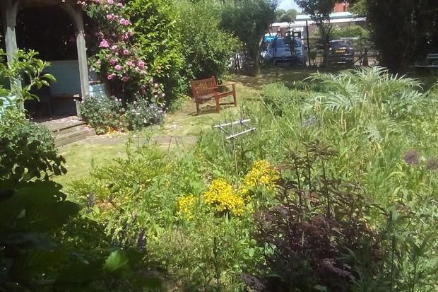 Restore's front garden during lockdown