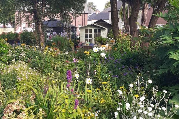 Thomas Williams' hidden garden
