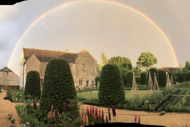 Isabel Bannerman's garden in lockdown