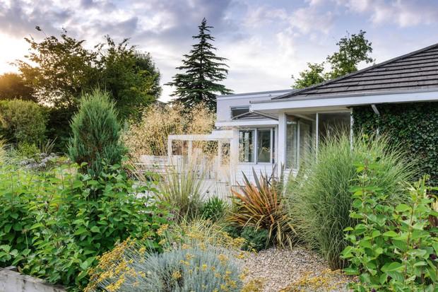 Alice Meacham gravel garden Dorset