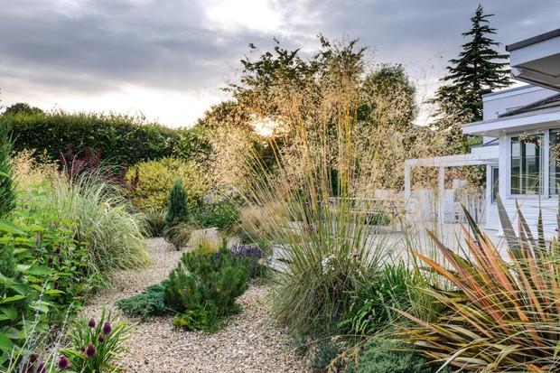 Gravel garden in Dorset.