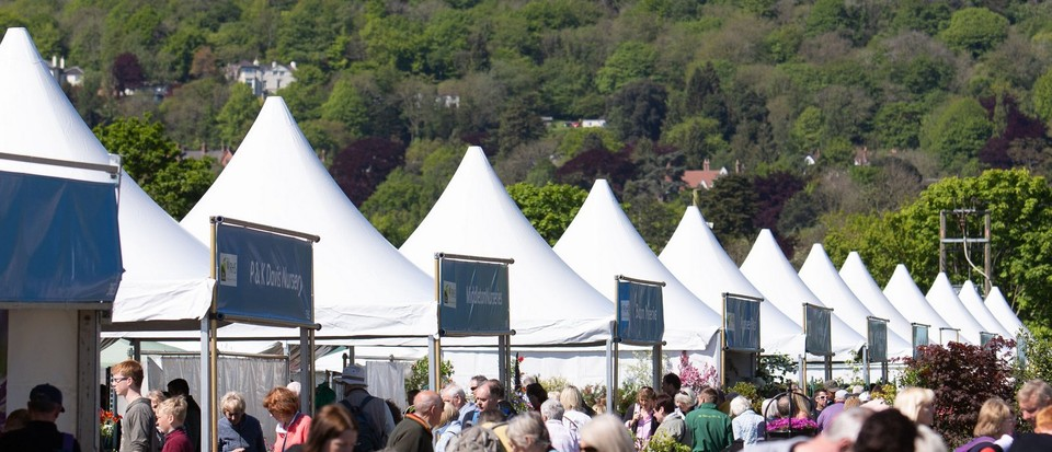RHS Flower Shows 2021: what's happening where