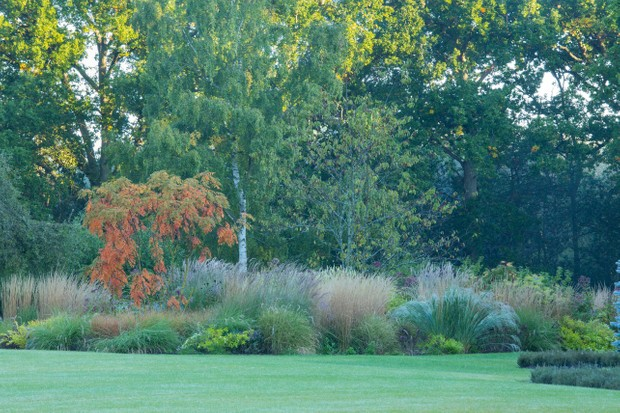 Rob Chew's designs for a garden in Ascot