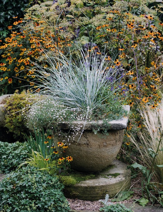 A container planting display with Elymus magellanicus from Ben Preston