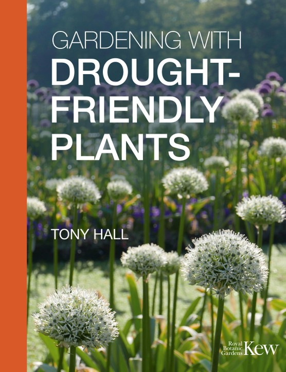 Gardening with Drought Friendly Plants