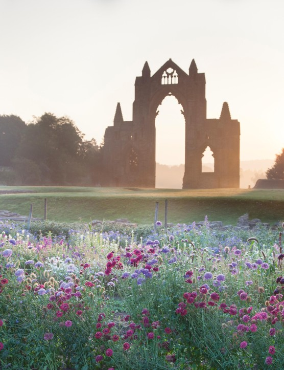 Rowe's at Priory Gardens: cutting garden in Yorkshire