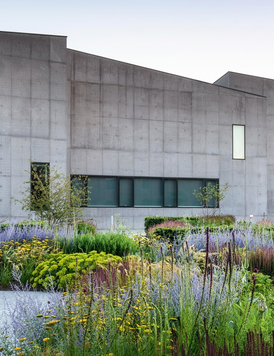 The Hepworth Wakefield Garden - Summer (31st July 2020)