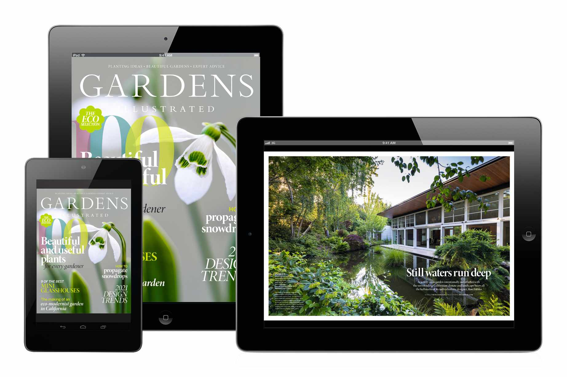 January's Gardens Illustrated