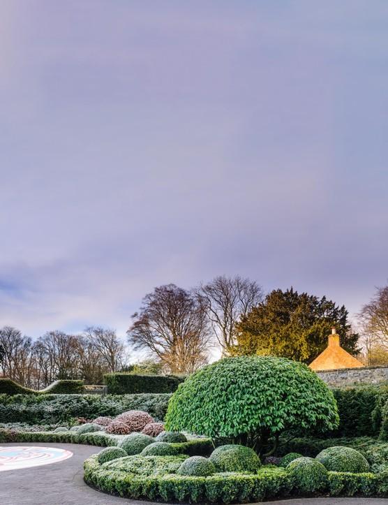 The large dome of Prunus Iusitanica in the pool garden