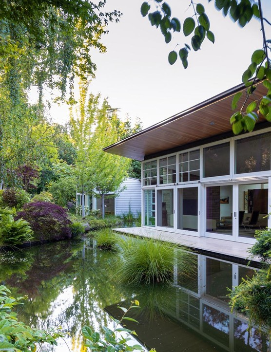 The heart of the garden is an 'oasis' formed by an enlarged pool with associated viewing deck