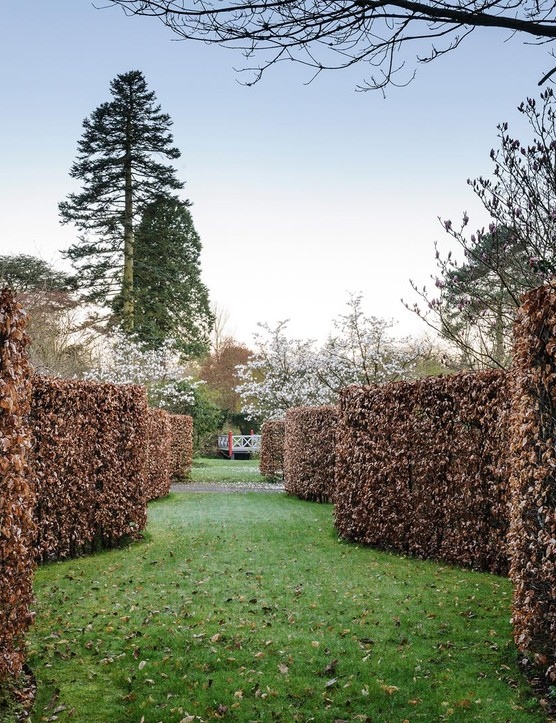 The inspiration for the beech Serpentine Walk in Gresgarth's flower garden was a similar walk at Chatsworth. At the far end, a pair of Magnolia x loebneri 'Leonard Messel' produce large, soft pink flowers before the foliage is formed.