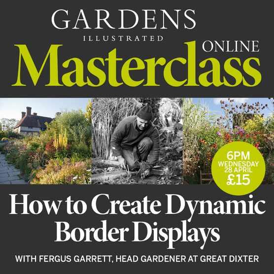 2021_Masterclass_Dixter_1080x1080px