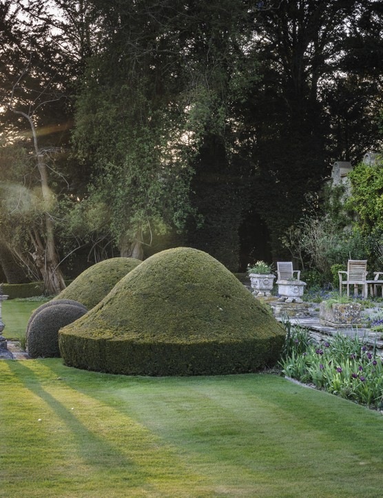 The terrace by the house has stone troughs of bulbs and flowering rosemary, with early irises and muscari between the pavers, and tulips lining the wall. The garden features topiary including four golden yews and large, ancient box and yew forms clipped into amorphous shapes