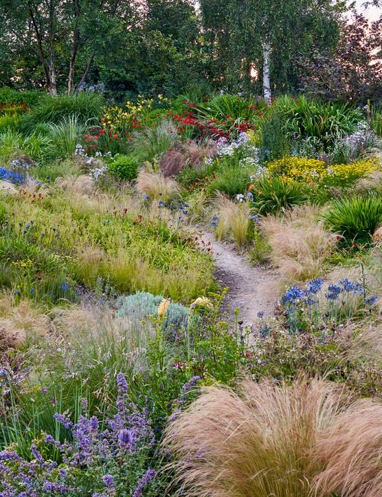 Wildside Nursery Garden – Keith Wiley