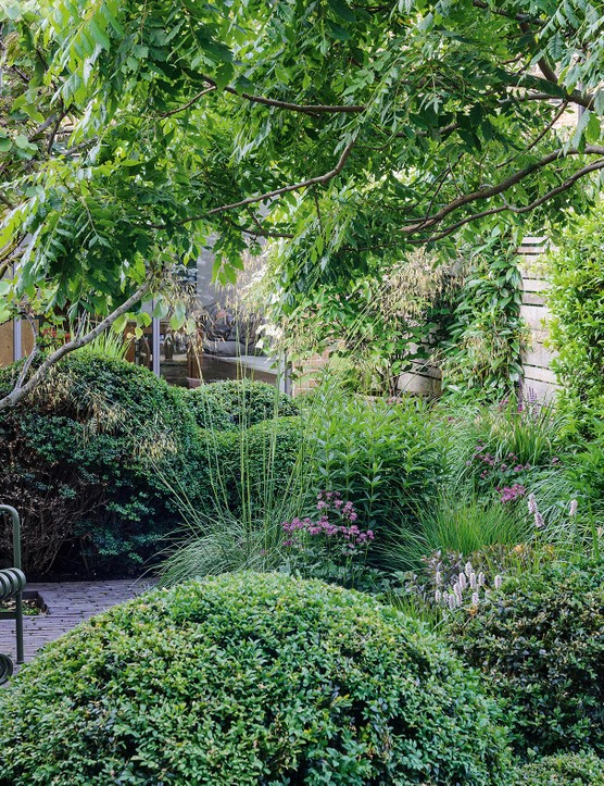 Intimate seating areas and pockets of planting are carefully located to take advantage of the passage of the sun, thus making the best of the available light and shade throughout the day.
