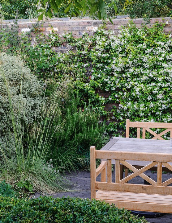 A cosy, al fresco dining area is enclosed within walls shrouded in Muehlenbeckia complexa and evergreen Trachelospermum jasminoides, underplanted with rosemary and Stipa gigantea.