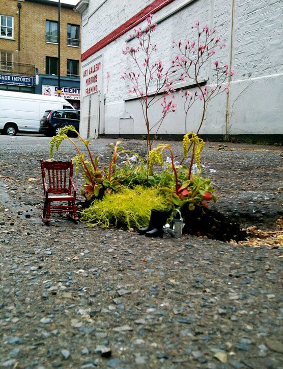 Steve Wheen, the Pothole Gardener, describes his tiny gardens as little 'holes of happiness' but his Instagram feed serves as a reminder of the lack of green space around roads