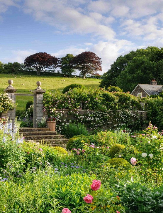 At Upper Sydling in Dorset the landscape beyond is as much a part of the garden as the flowers within it. Here in the cutting garden, the view is framed by a floriferous mass of rambling roses, including the pretty pink Rosa 'May Queen', which entwine their flowering tentacles through, around and over the balustrade of ageing green oak.