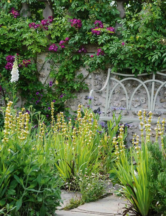 Throughout the garden, carefully located seating areas, their furniture almost swallowed up with froth of Sisyrinchium striatum, tempt one to linger a while and enjoy at close hand the immersive experience of being engulfed in the heady explosion of the summer garden in all its glory.