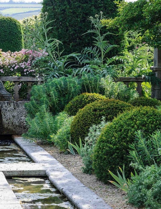 In the Rill Garden (formally an indoor swimming pool), the wonderfully bold, architectural triumvirate of Cynara cardunculus, Euphorbia charachias and Iris pallida holds court. Beyond, Susanne's beloved roses foam and froth in romantic exuberance.