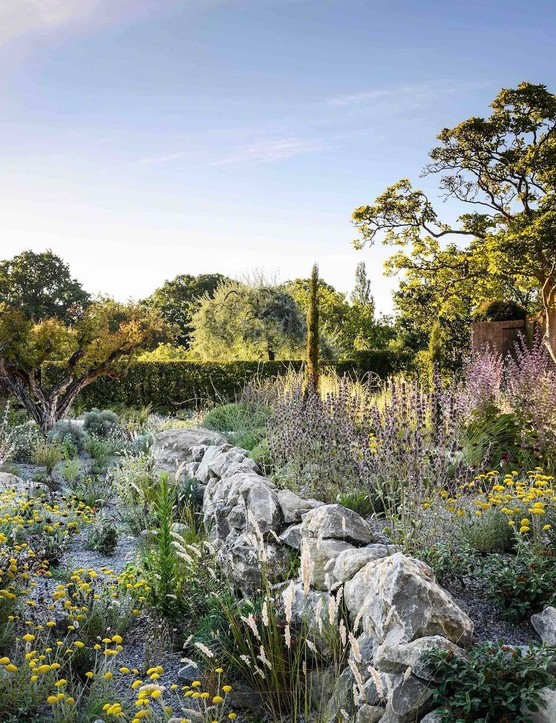 Over time self-seeders, such as Salvia sclarea var. turkestaniana 'Vatican Pink' and Melica ciliata, will be allowed to find their own niches and provide the garden with differing generations of planting