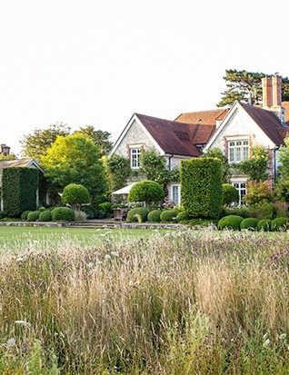 Looking towards the house from the meadow, it is clear how the gentle steps and low, retaining wall leading on to the lawn anchor the building to its setting. This impression is reinforced by the clipped columns of Carpinus betulus and repeating buxus balls.