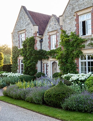 Columns of clipped hornbeam and onion domes of yew provide an evergreen frame that sets off the front elevation of the house. A thick skirt of Lavandula angustifolia 'Munstead', Hydrangea arborescens 'Annabelle', and spikes of Phlomis russeliana and Salvia 'Blue Spire' complete the picture.