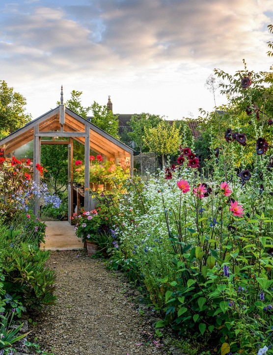 Mary Keen's greenhouse is cleverly positioned to form part of the circuit around the garden; you can admire her collection of pelargoniums by walking right through it. The path here is lined with jewel-coloured dahlias and the tall, luminous-blue Salvia patens 'Guanajuato' emerging from clouds of Erigeron annuus.