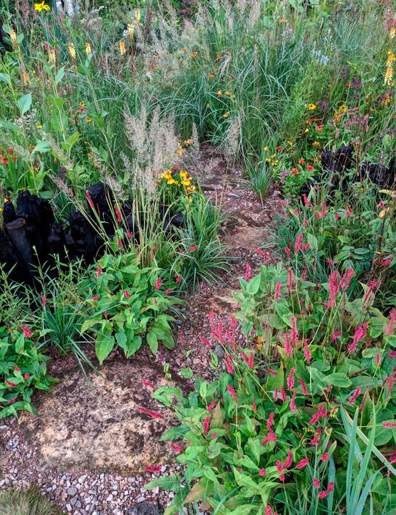 The Yeo Valley Organic Garden at Chelsea 2021