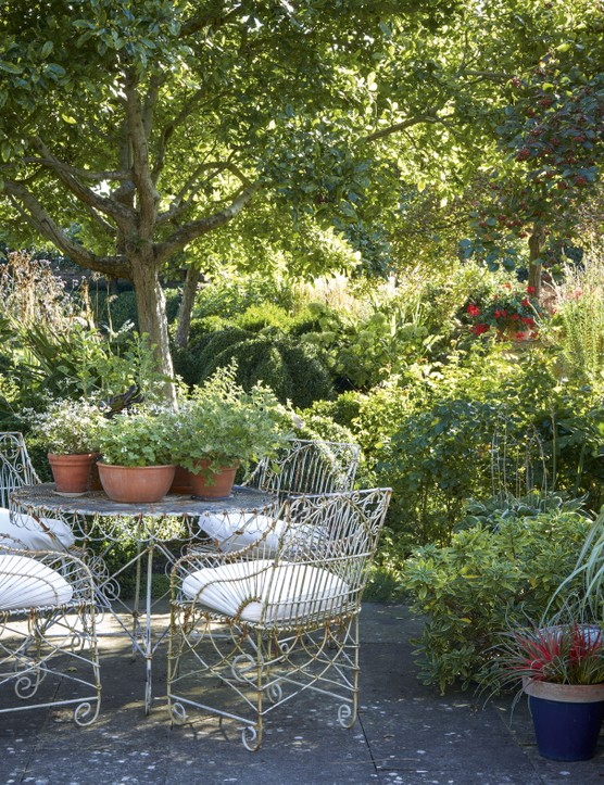 ouise continues her green theme around the terrace, with pots of sword-like Astelia australis punctuated by dots of red Dahlia 'Bishop's Children'.