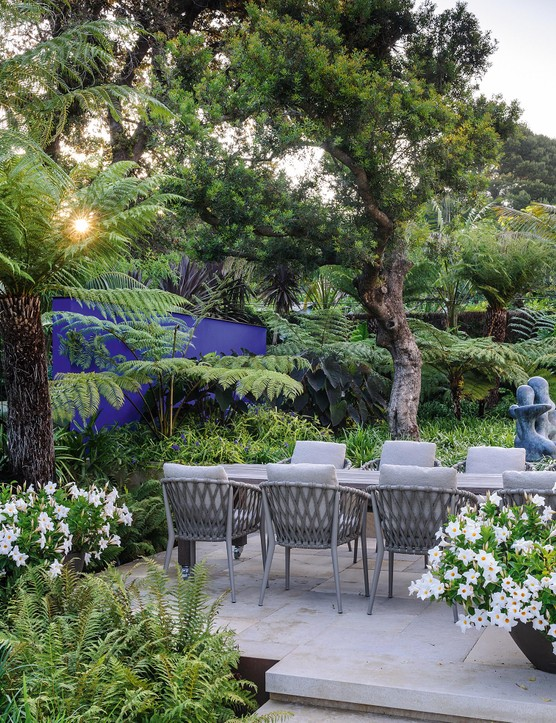 In the shady dining area at the back of the villa a gnarled Pistacia lentiscus forms the top storey of the layered planting, with a predominantly white and green colour scheme against a blue feature wall. The sculpture, by the owner's father, Jim Ritchie, emerges from a sea of Liriope muscari 'Monroe White', while white-flowered Mandevilla Diamantina Jade White (= 'Lanmichigan') billows out of terracotta pots.