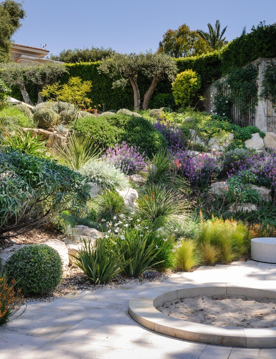 The sun-baked rock garden is planted in soil that has been made more open by the addition of volcanic rock. Crisp, clipped balls of Teucrium fruticans, the Australian rosemary Westringia fruticosa and dense, bushy rosemary, Salvia rosmarinus, along with cushioning plants, such as centaureas and erysimums, are interplanted with looser, more vertical forms, including the white society garlic Tulbaghia violacea 'Alba', the orange-flowered Bulbine frutescens (at the bottom), the fan-shaped Dasylirion serratifolium and two spiky aloes, the orange-flowered Aloe x spinossisima and further up the slope Aloe arborescens.