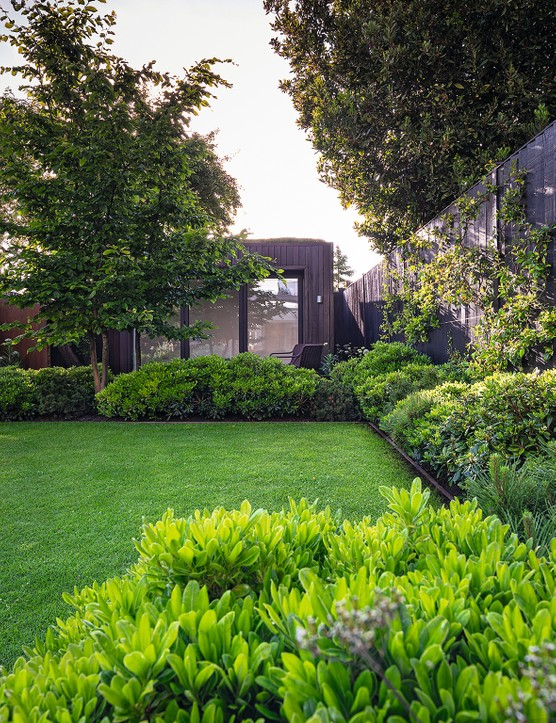 At the heart of the garden the planting is predominantly cool and gree