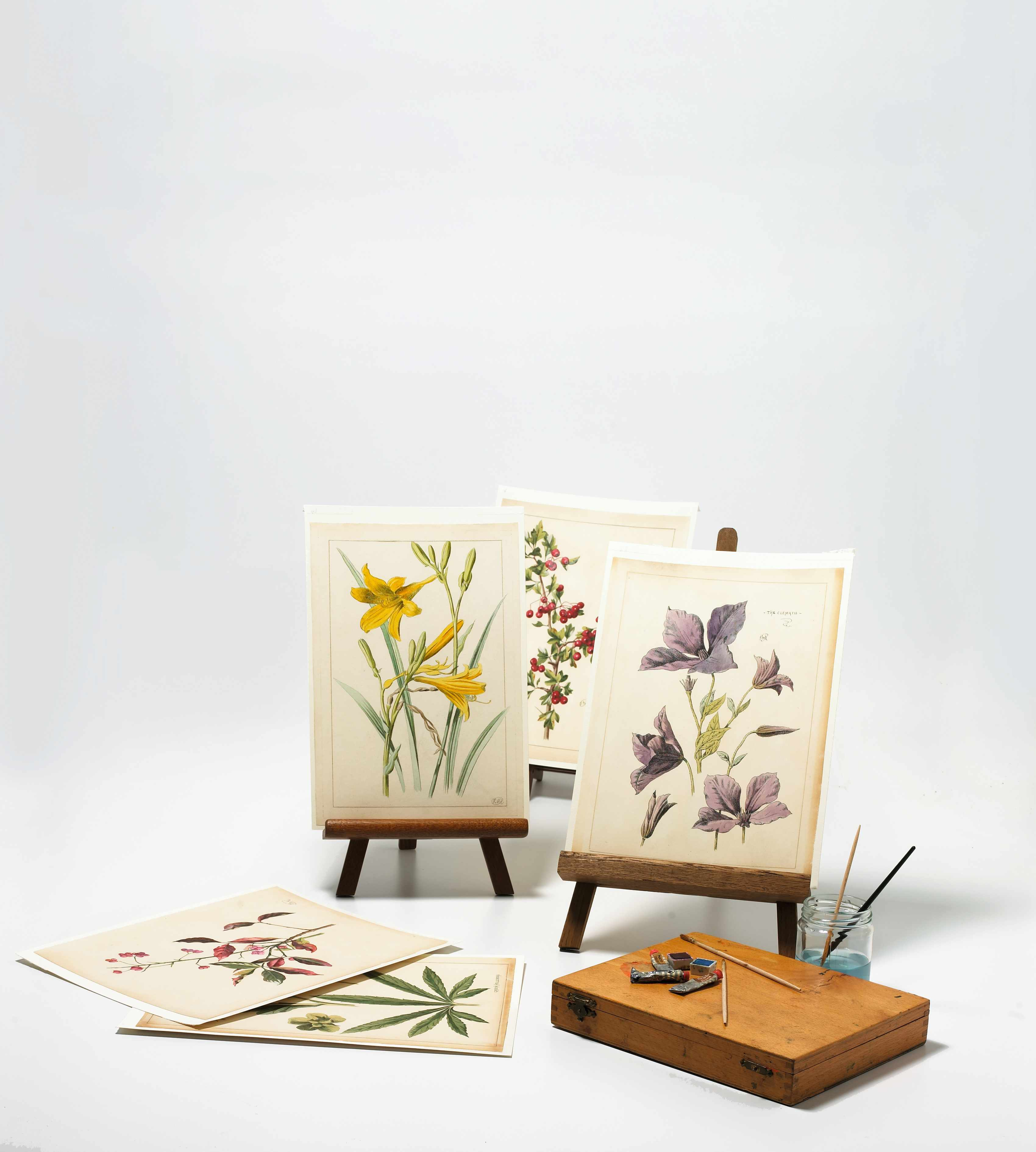 A series of Victorian botanical watercolour paintings on easels