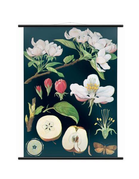 Small Apple Tree Print, £65, Wallography