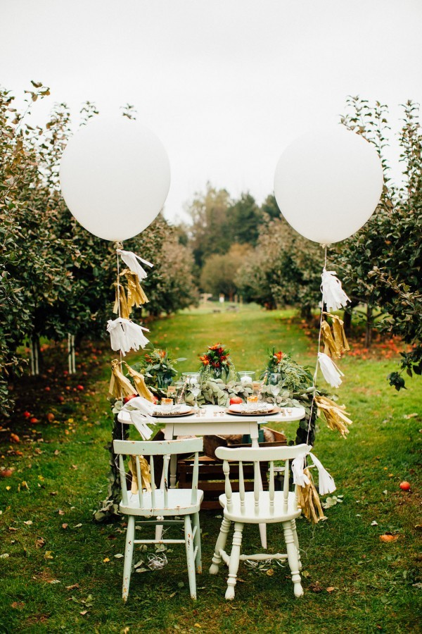 15-apple-farm-picnic-ideas-600x900