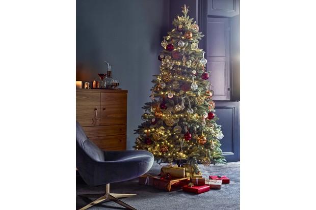 A Serbian Blue Spruce Christmas tree