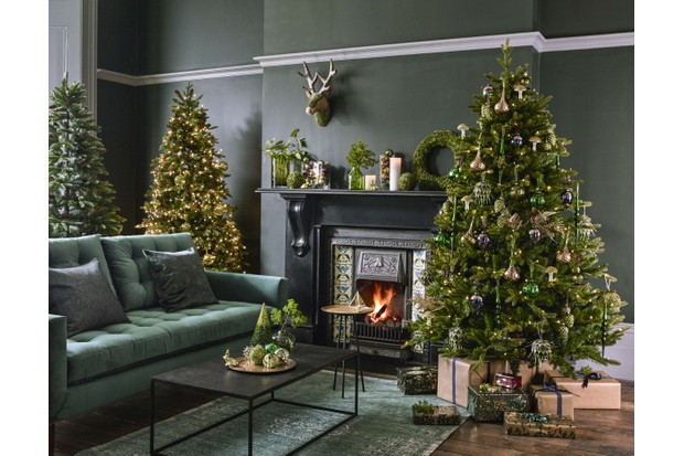 A woodland inspired room with multiple Christmas trees