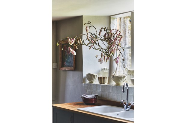 A plant pot placed on a window ledge above a sink