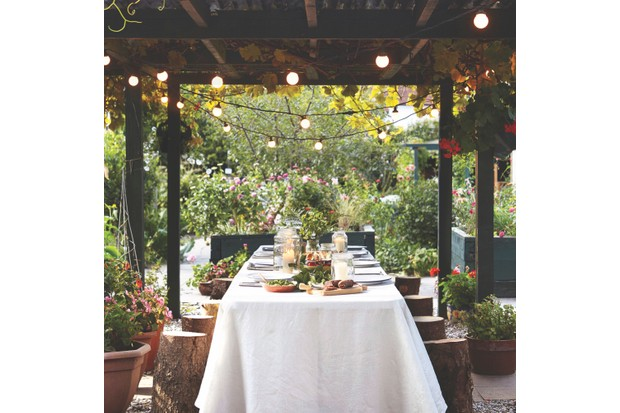 A romantic outdoor seating area compromising of a long table laid out for dinner under a canopy of festoon lights and grape vines