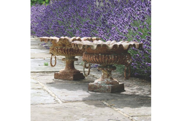 19th-century French cast-iron garden urns in front of flourishing lavender bushes