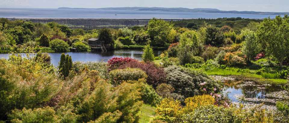 The UK's best arboretums