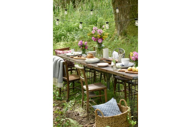 A wild woodland area with a long vintage table and mismatched chairs