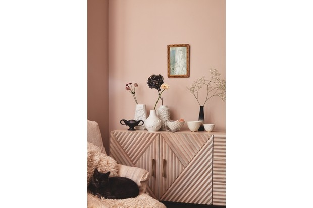 Multiple vases sit on a blush pink sideboard, behind a sleeping black cat