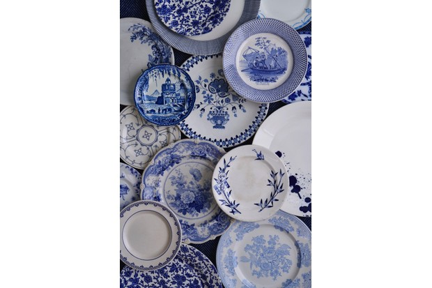 A collection of vintage and modern blue and white plates spread out on the floor